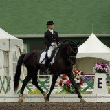Exercices de dressage