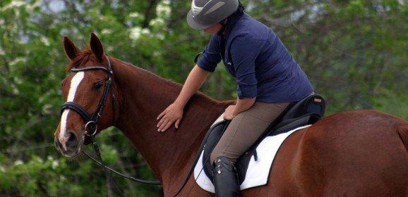 Quand et comment débourrer un jeune cheval