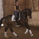 L'entraînement physique du cavalier